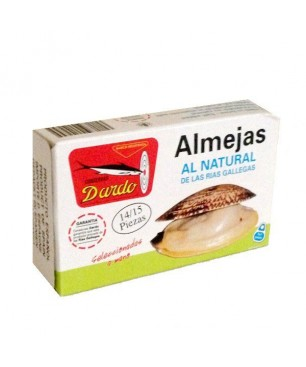Natürliche Muscheln 14/15 Stück Dardo (Galizischen Rias)