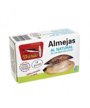 Natürliche Muscheln 18 Stück Dardo (Galizischen Rias)