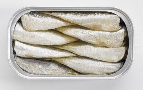 comodidades lata sardinas en conserva