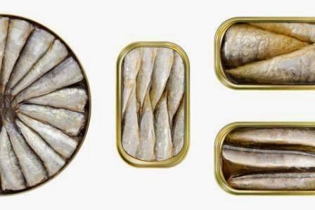 tipos sardinas en conserva