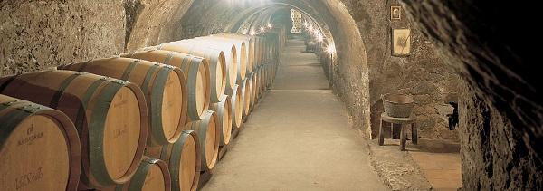 Bodega subterranea siglo XVI barricas vino