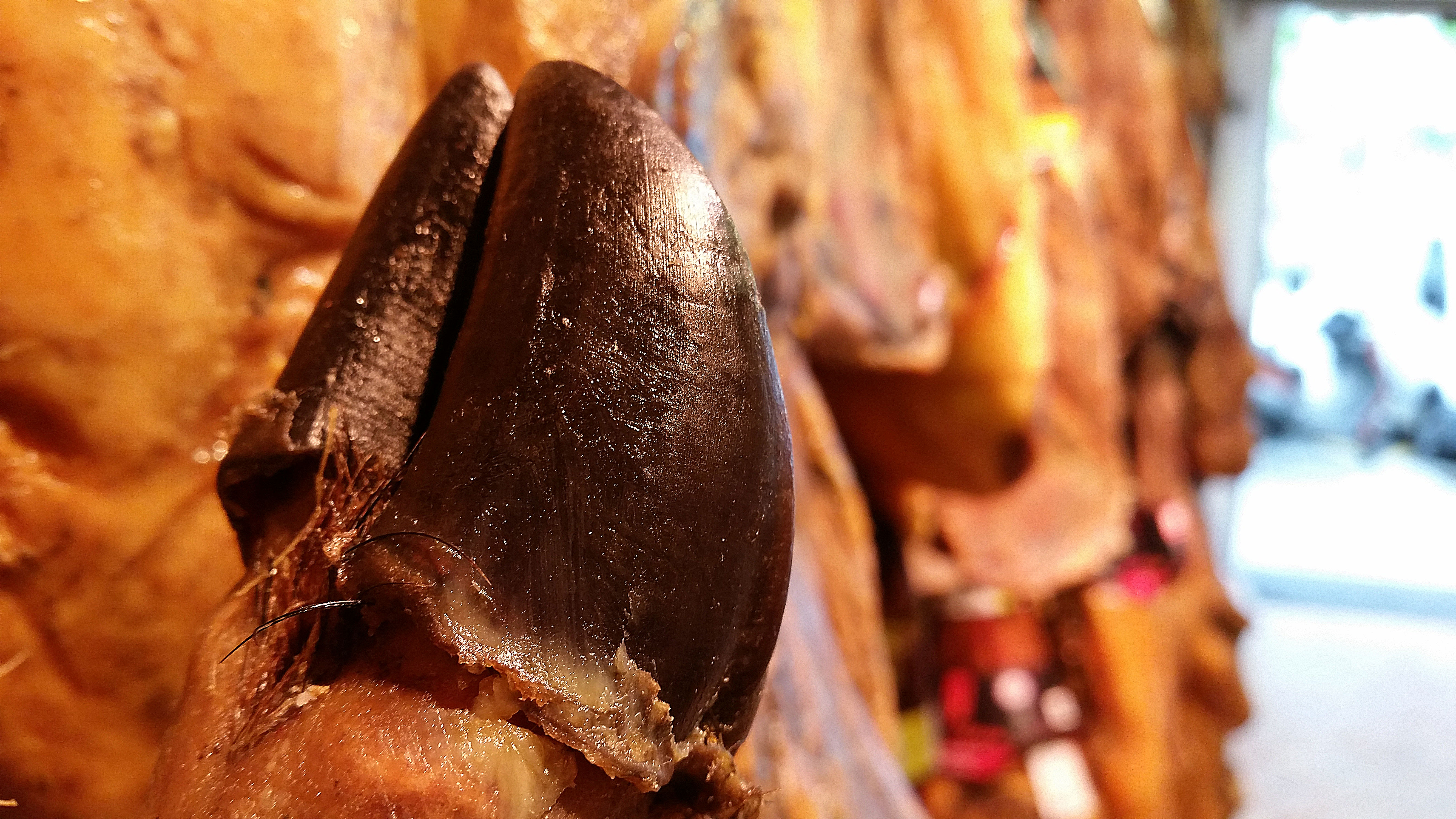 jambon iberique pata negra