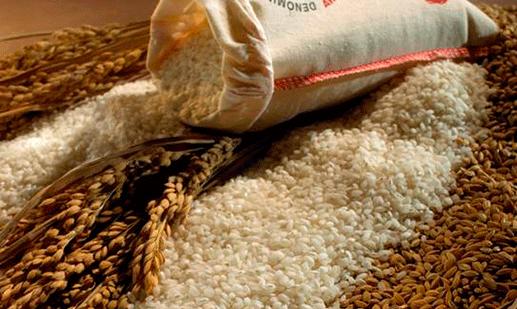 historia del arroz montsia del delta del ebro