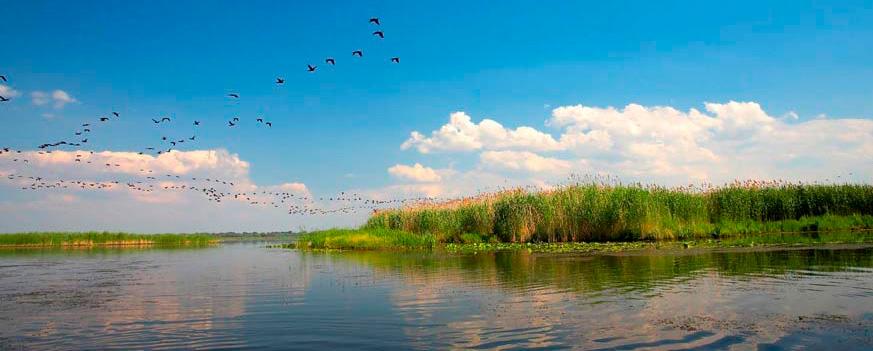 Zona geográfica de producción del arroz del Delta del Ebro