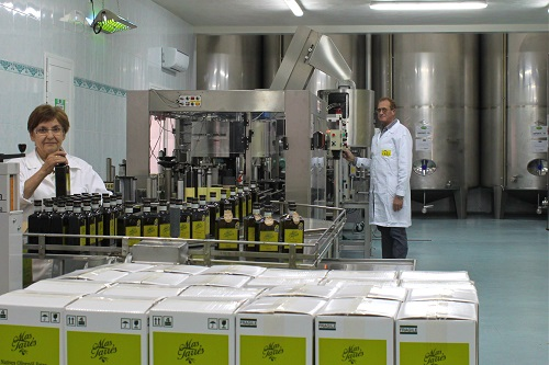 processo lavorazione linea confezionamento olio d'oliva más tarrés