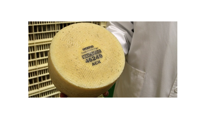 Tomelloso, the best Manchego cheese in the world