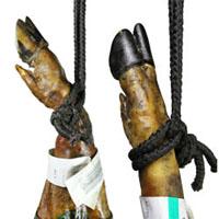 jamon iberico bellota pata negra de extremadura