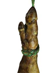 caracteristiques du jambon serrano de salamanca y  de extremadura